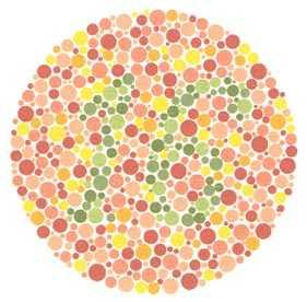 Renk Körlüğü Bekçi Olmaya Engel Mi