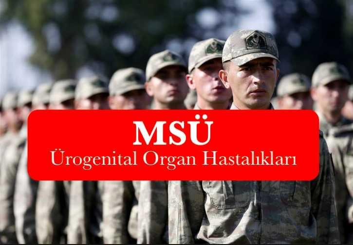 msu urogenital organ hastaliklari saglik sartlari