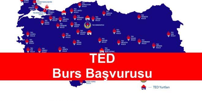 Türk Eğitim Derneği TED Burs Başvurusu