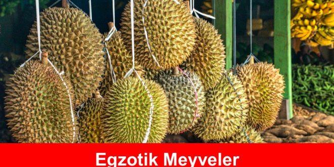 Egzotik Meyveler