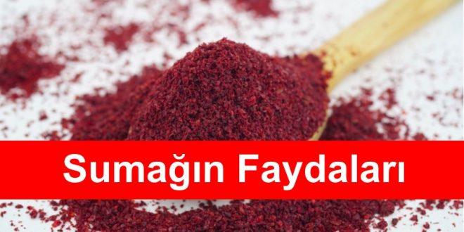 Sumagin Faydalari