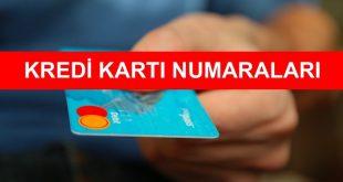 kredi karti numalari