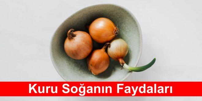 Kuru Soganin Faydalari