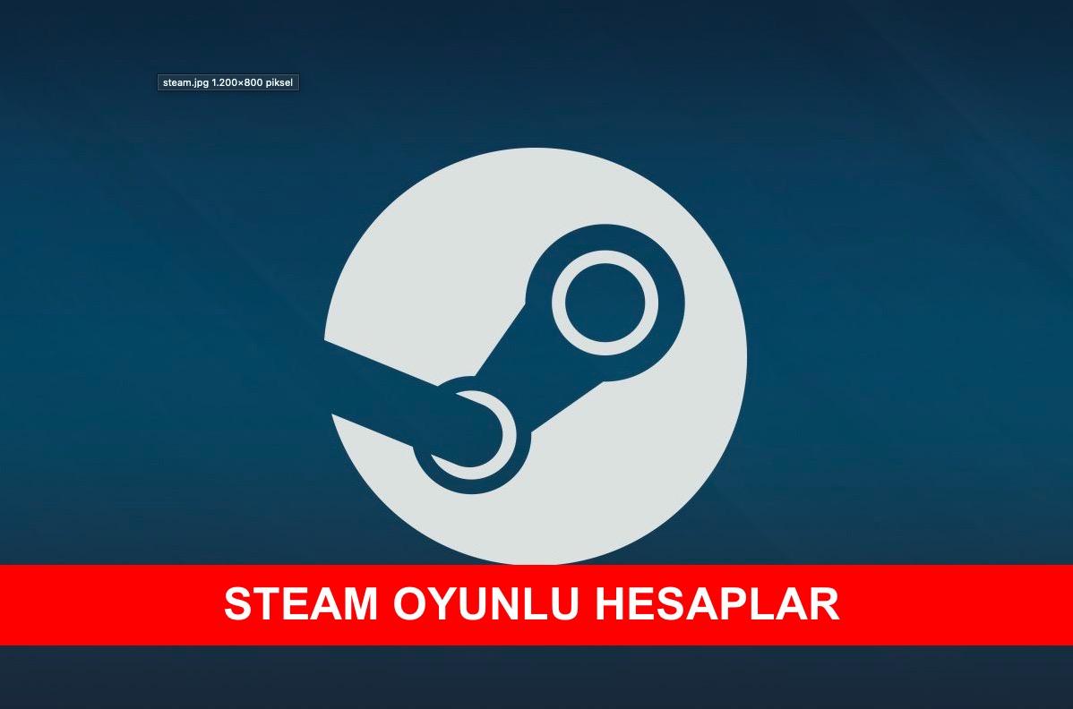 Steam Oyunlu Hesaplar